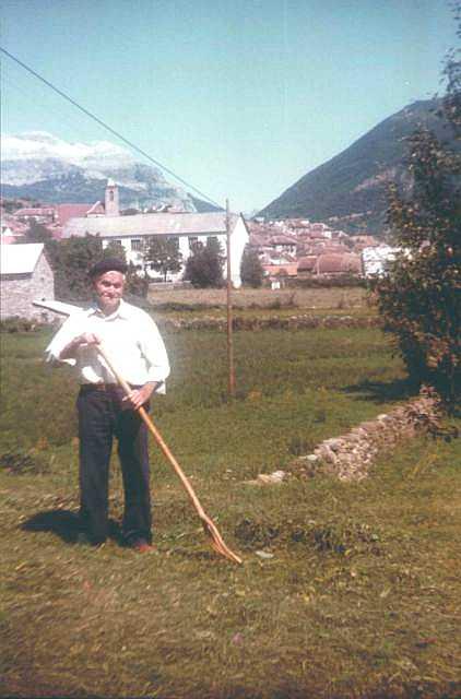 Miguel de Lorenz trabajando la hierba junto al pueblo de Echo. Miguel de Lorenz forquiando la yerba chunto a Echo