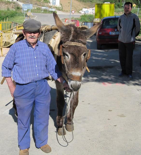 El mismo agricultor con el burrico observados por M. Martín en Codos. O mesmo labrador con o somero, alufraus por Migalánchel Martín, en Codos