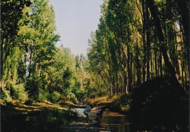 El río Isuela junto a Calcena.- La Isuela á canto Calzena